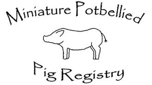 Potbellied Pig Breeders